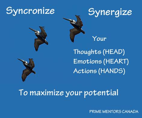 Syncronize, Synergize, to maximize your potential. Thoughts, Emotions, Actions